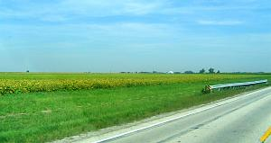 Click image for larger version  Name:3 Okaw Valley IL 5.jpg Views:21 Size:146.7 KB ID:32315