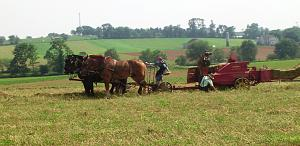 Click image for larger version  Name:PA Amish - 3.jpg Views:15 Size:175.1 KB ID:26120