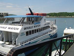 Click image for larger version  Name:Bar Harbor & Whale Watching (11).jpg Views:15 Size:211.7 KB ID:29840