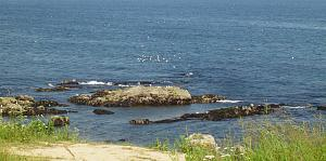 Click image for larger version  Name:Acadia National Park - 04.jpg Views:37 Size:193.0 KB ID:26215