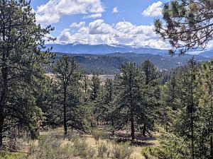 Click image for larger version  Name:Colorado Property John & Carin.jpg Views:14 Size:403.1 KB ID:28366