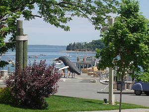 Click image for larger version  Name:Bar Harbor & Whale Watching (9).jpg Views:16 Size:304.2 KB ID:25363