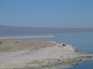 Click image for larger version  Name:Salton Sea5.jpg Views:7 Size:132.5 KB ID:27822