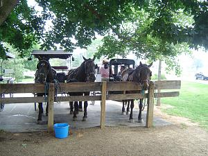 Click image for larger version  Name:6e Amish Country Visit - Intercourse, PA (8).jpg Views:16 Size:337.1 KB ID:32381