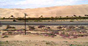 Click image for larger version  Name:Imperial Sand Duns Rec Area  (9).jpg Views:29 Size:194.4 KB ID:28870